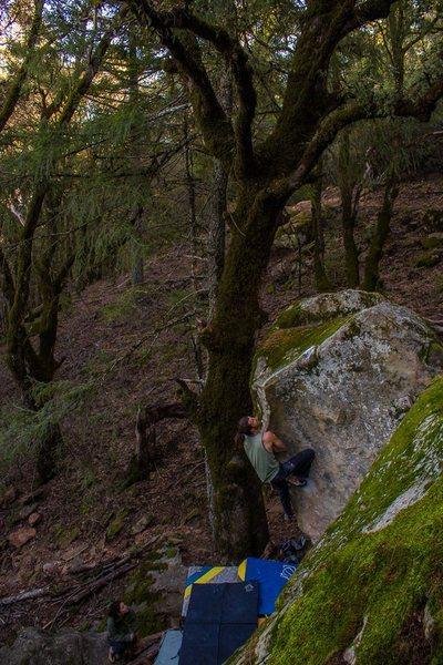 Rock Climbing Photo: Sharma Arete