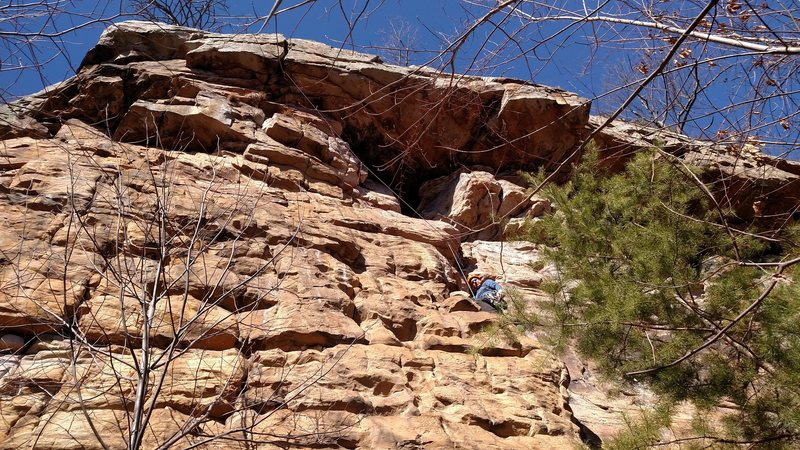 Rock Climbing Photo: Wild Pink, Tennessee Wall