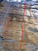 Rock Climbing Photo: Tiger Honey