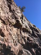 Rock Climbing Photo: Eland batting cleanup on BVC