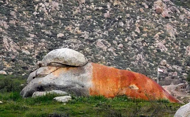 Rock Climbing Photo: Look for the lion, Lion's Den