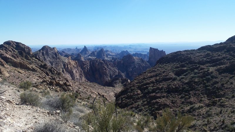 Looking roughly east from near the summit of Signal Mountain at the rugged peaks of the Kofa range.
