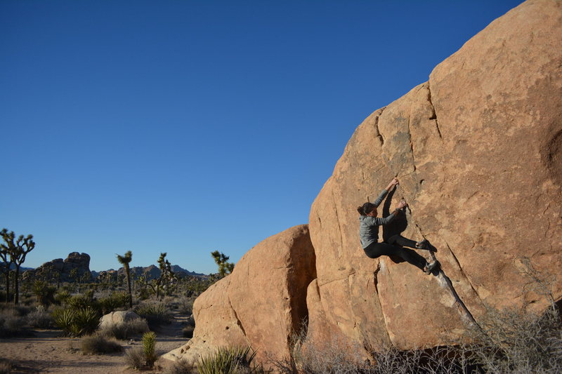 Rock Climbing Photo: Bardini Crack