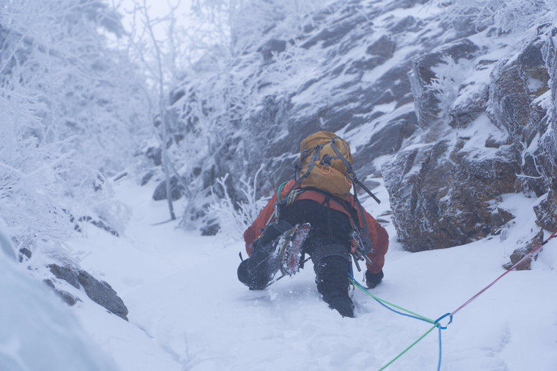 Rock Climbing Photo: shoestring gully