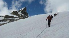 Rock Climbing Photo: Heading up the Wapta Icefield, Canada