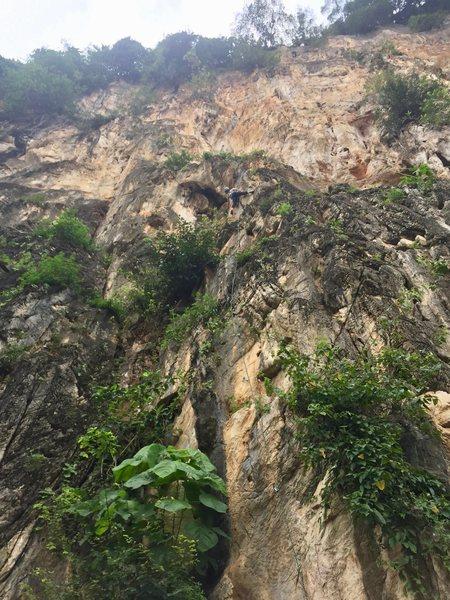 Batu Caves - Damai Wall