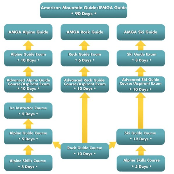 AMGA Program Flowchart