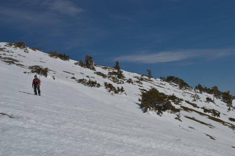 Alice navigating the snowfield beneath Harwood
