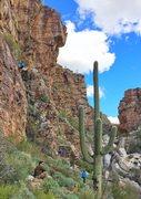 Rock Climbing Photo: sunny days