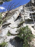 Rock Climbing Photo: Skip moving into the crux on an early TR session.