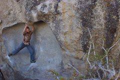 Rock Climbing Photo: Pollen Grains.