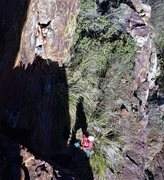 Rock Climbing Photo: Weston M cruising the first ascent; he's just ...