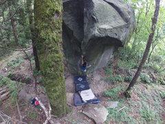 Rock Climbing Photo: Tyler Thompson on New Moon