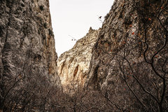 Rock Climbing Photo: Redbud Canyon. Looking down canyon during the wint...