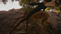 The fallen tree kind of hinders belay position and  provides 'stick-up-ass' fall potential.