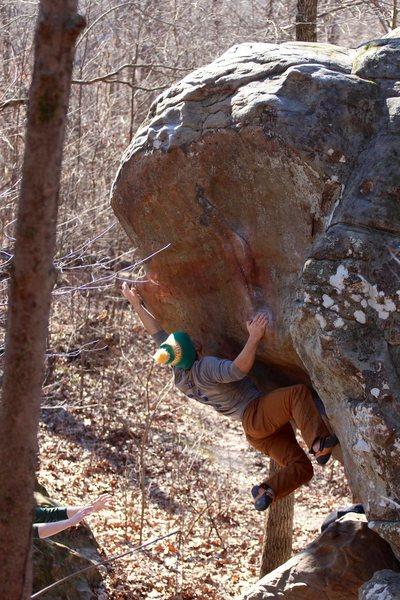 Rock Climbing Photo: Dino if you're short