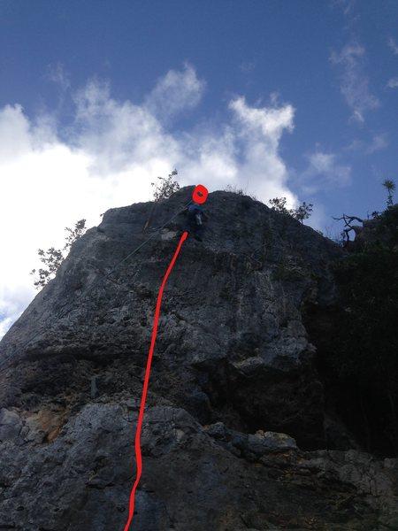 Rock Climbing Photo: Mumu straight up