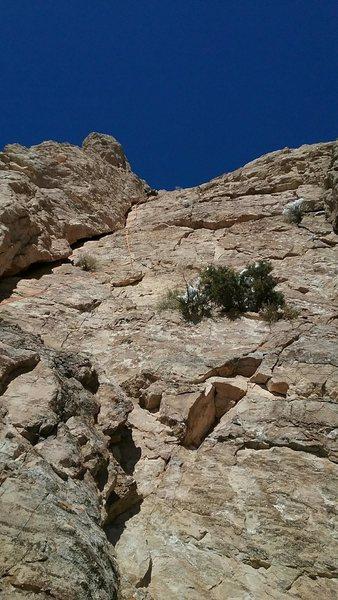 5.9. Climbing pro: #3 through #5 cams.