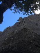 Rock Climbing Photo: Brando crushing it