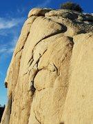 Rock Climbing Photo: Onsighting Illusion Dweller