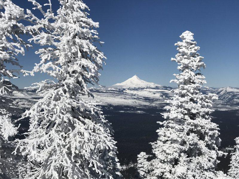 Mt Jefferson as seen from Black Butte.