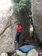 Rock Climbing Photo: Jed crimping hard on Hardened Criminal