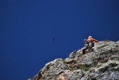 Rock Climbing Photo: Me and hawk