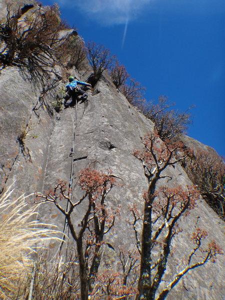 Armando Dattoli climbing La Hercules.<br> <br> Photo by Mauricio Herrera Cuadra.