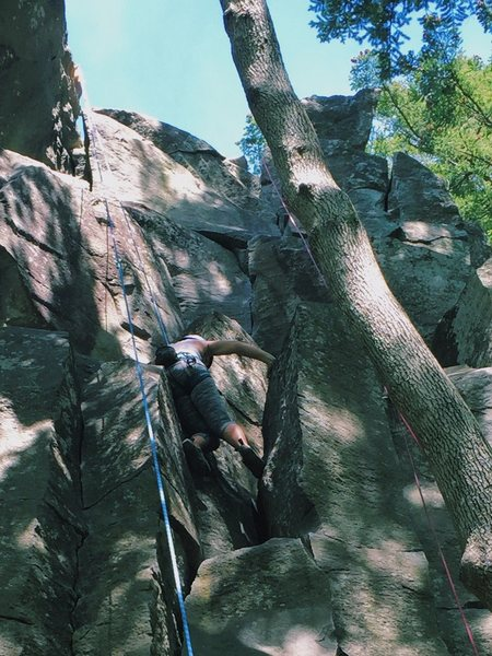 Rock Climbing Photo: Broughton Bluff