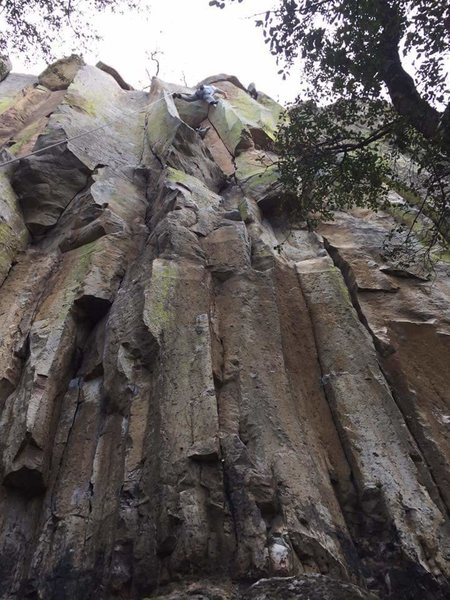 Above cactus rest before moving into last crux moves.