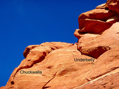 Rock Climbing Photo: Looking up at Chuckwalla and Underbelly from the P...