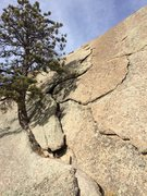 Rock Climbing Photo: Looking up the flake.
