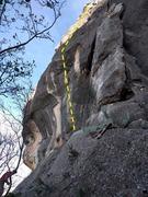 Rock Climbing Photo: Vertible Anomaly