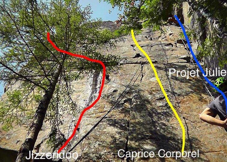 Rock Climbing Photo: Face avec Caprice Corporel