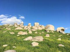 Rock Climbing Photo: With rain comes green