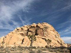 Rock Climbing Photo: Cyclops Rock as seen from the street parking