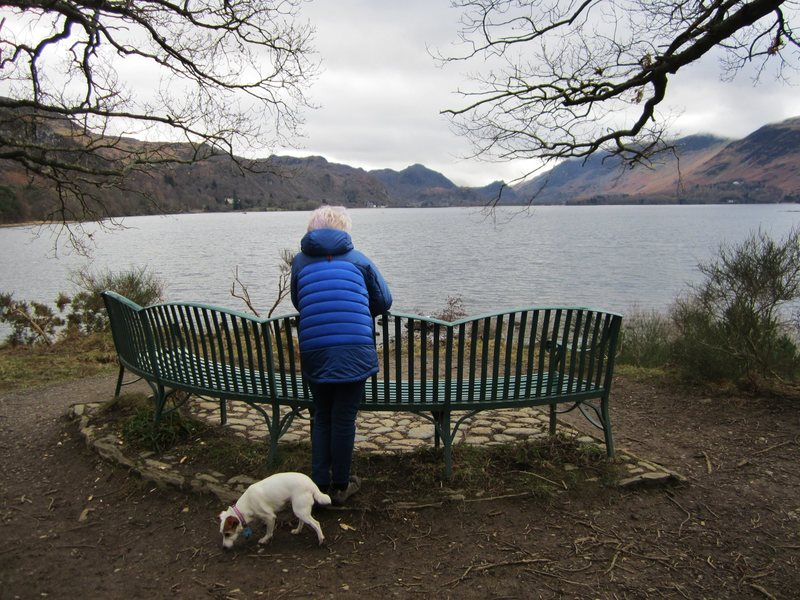 View up the lake  to the jaws of Borrowdale