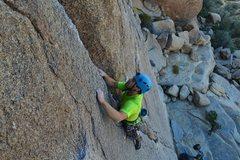Rock Climbing Photo: Bird of Fire!