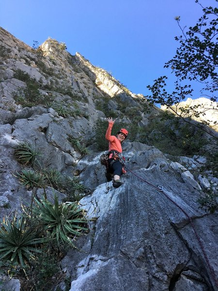 Leading up the first pitch.  The first 1/2 is a bolted scramble, then you come to move or two.  Much fun. Photo by Adrian Burke