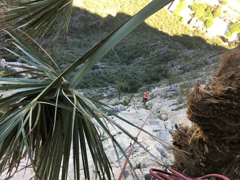 Near the top of the 6th pitch, excluding the last few bolts to the ridge.  Photo by Adrian Burke