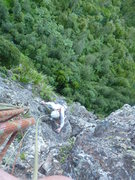 Rock Climbing Photo: Finishing up the top of pitch 2 on easy ground