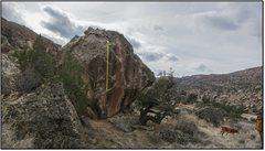 Rock Climbing Photo: Trappist.