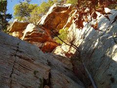 Rock Climbing Photo: OH's above P1 of Lets Face It