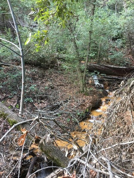 "Stay left along the Creek when reaching an obvious fork in the trail. Cross the log, than the Creek itself and continue up the opposite bank until reaching the ""Silver Trail"" Turn left and continue down this trail for 1/8 mile. Turn right on Paved road next to the buildings."