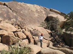 Rock Climbing Photo: A view of the Pixar Wall, Joshua Tree NP