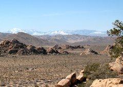 Rock Climbing Photo: The view from the Pixar Wall, Joshua Tree NP