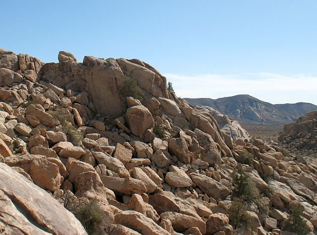 Rock Climbing Photo: Walee Rock, Joshua Tree NP
