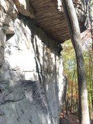 Rock Climbing Photo: Roof Traverse