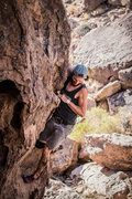 Rock Climbing Photo: Nicholas Rondilone looking back down at the ground...