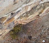 Rock Climbing Photo: A photo looking down on the bush in the beginning ...